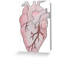 anatomical heart Greeting Card