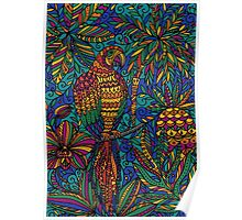 Parrot macaw Poster
