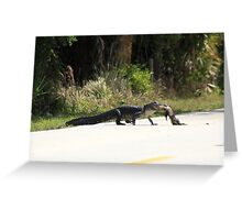 AMERICAN ALLIGATOR RETRIEVES ROAD KILL Greeting Card