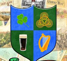 Coat Of Arms - Ireland - Shield and Sword by Mark Tisdale