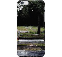 Princess Plantation 67 iPhone Case/Skin