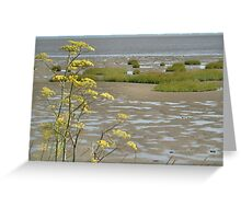 Mudflats Greeting Card