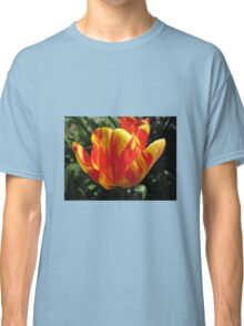 Colourful Tulip Classic T-Shirt