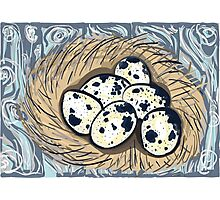 Quail eggs Photographic Print