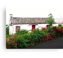 Abandoned Cottage, Inishowen Peninsular, Donegal, Ireland Canvas Print