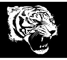 Growling Tiger Photographic Print