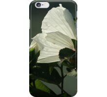 Captured in the light iPhone Case/Skin