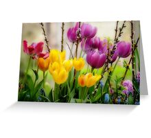 Spring Flowers in Balcony Planter Greeting Card
