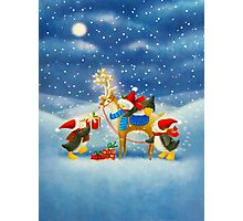 Penguin and Reindeer Photographic Print