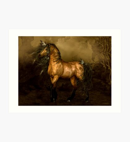 Shikoba - Choctaw Native American Horse Art Print