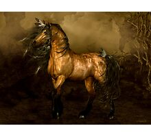 Shikoba - Choctaw Native American Horse Photographic Print