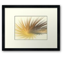 Gold Feather Plumes Framed Print