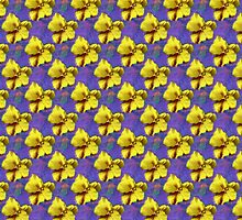 Pretty Painted Yellow Pansy Over Purple Photo Altered Art by PhenomPixels