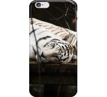 Snow Tigers Resting iPhone Case/Skin
