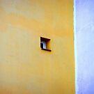 Window by villrot
