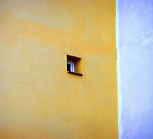 Window by villrot