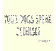 Your Dogs Speak Chinese????? ver. 2 Photographic Print