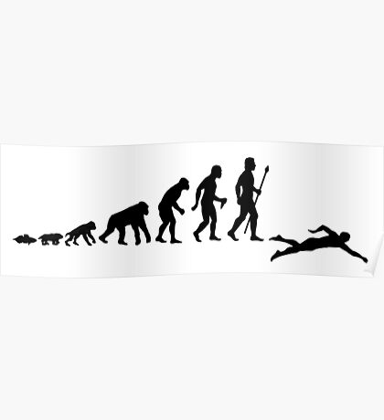 Swimming Evolution Of Man Poster