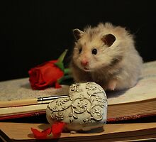 Hamster write a poem by Marianne Ketelimäki