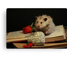 Hamster write a poem Canvas Print