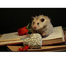 Hamster write a poem Photographic Print