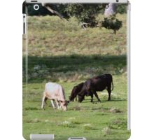Cow Country iPad Case/Skin