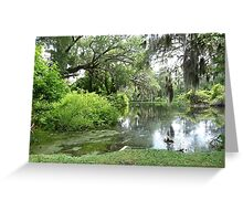 Southern Tranquility Greeting Card