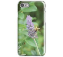 Humble Bee, Bumble Bee. iPhone Case/Skin