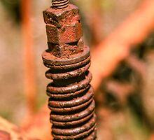 Rusty Spring by Thad Zajdowicz