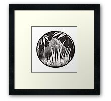 Jungle Framed Print