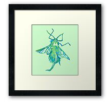 Woolly Aphid  Framed Print