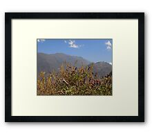 Landscape mountain Framed Print