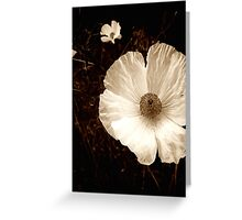 Old Time Poppy Greeting Card
