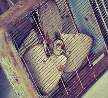 """Shabby Chic Rusty Antique"" by PhotoGumbo"