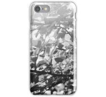 257/365 iPhone Case/Skin