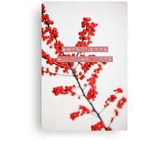 #Mistletoe #KissMeQuick Canvas Print