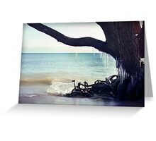 Icicles hang from a tree on the beach landscape Greeting Card