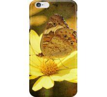 Butter in Spring Garden iPhone Case/Skin