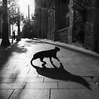 the animal by Victor Bezrukov