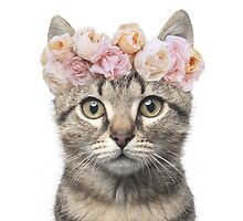 Flower crowned cat by chubbyanna