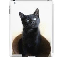 Pint Sized iPad Case/Skin