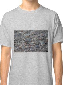 Sea Shells on Sanibel II Classic T-Shirt