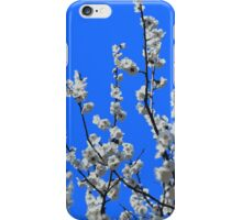 Beautiful White Umenohana Plum Blossoms Illustration iPhone Case/Skin