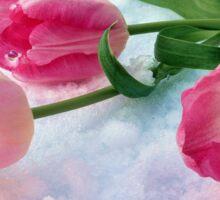 Tulips & Snow Sticker