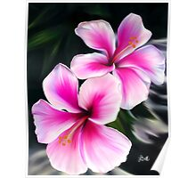 Bright Pink Hibiscus Flowers Poster