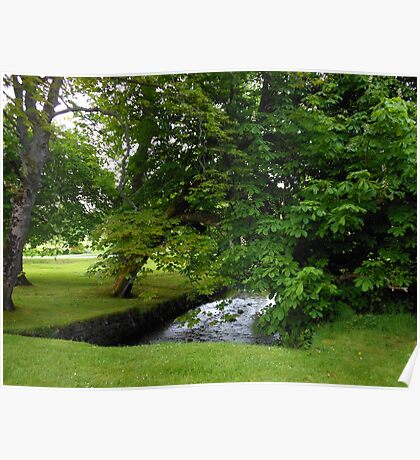 Little Stream in Lews Castle Grounds Poster