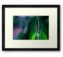 levels of branch Framed Print