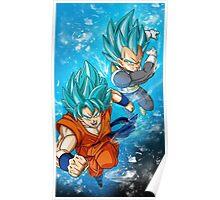 Goku and Vegeta SSGSS Poster