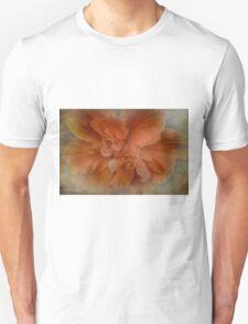 Shades of Orange Unisex T-Shirt
