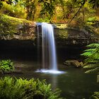 Magical Otways Water Fall by Noeline R